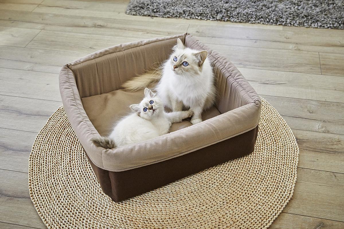 Eco-Well Hunde & Katzenbett quardratisch