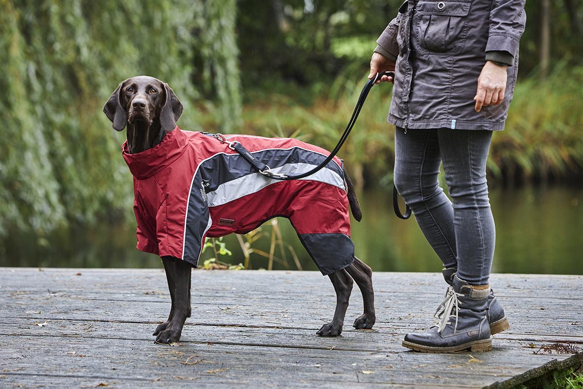 Regenanzug Dogz-Wear