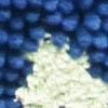 marineblau / lime